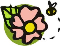 Cucina veg di Primavera
