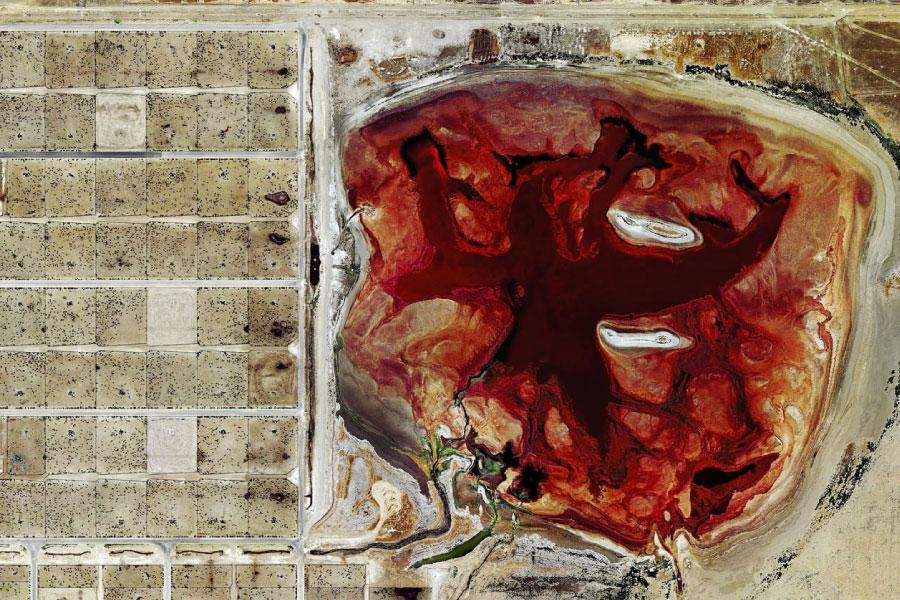carne e spreco risorse idriche