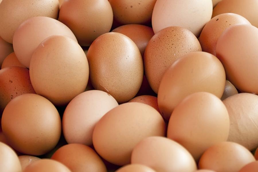 anche le uova nascondono crudeltà per gli animali