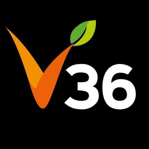 V36-vegan-savona_ioscelgoveg