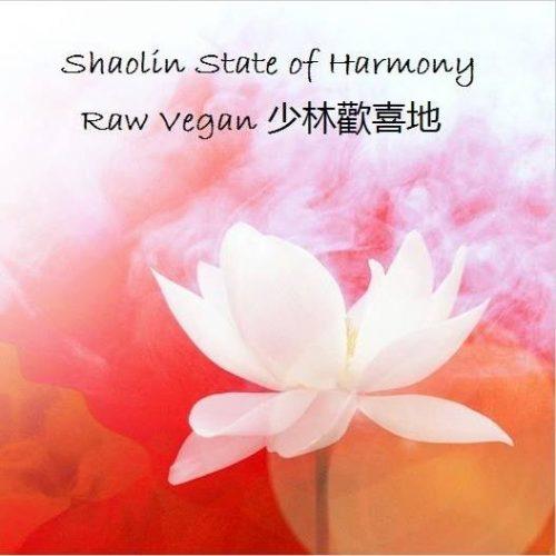 shaolin state of harmony_milano_raw vegan_ioscelgoveg