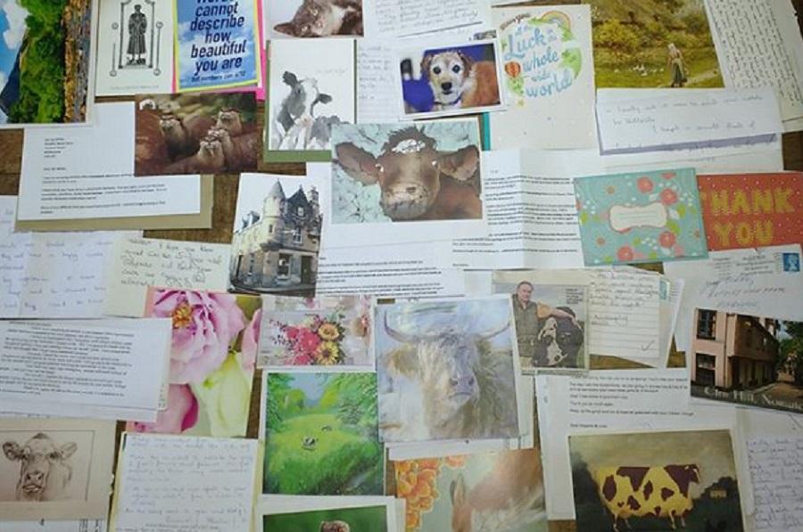 Lettere dei sostenitori del progetto dei Wilde..