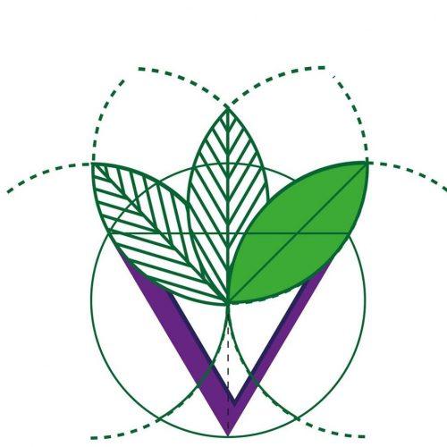 vitto pitagorico -napoli-vegetarian/vegan/raw_ioscelgoveg