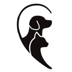 di cane in gatto-udine-vegetarian/vegan_ioscelgoveg