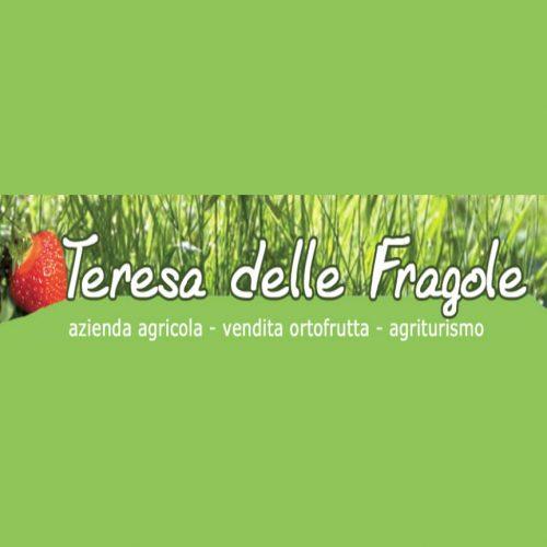 teresa delle fragole-lecco-vegetarian/vegan_ioscelgoveg