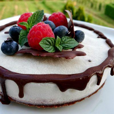 Semifreddo cocco cioccolato Serena Scuteri_ioscelgoveg