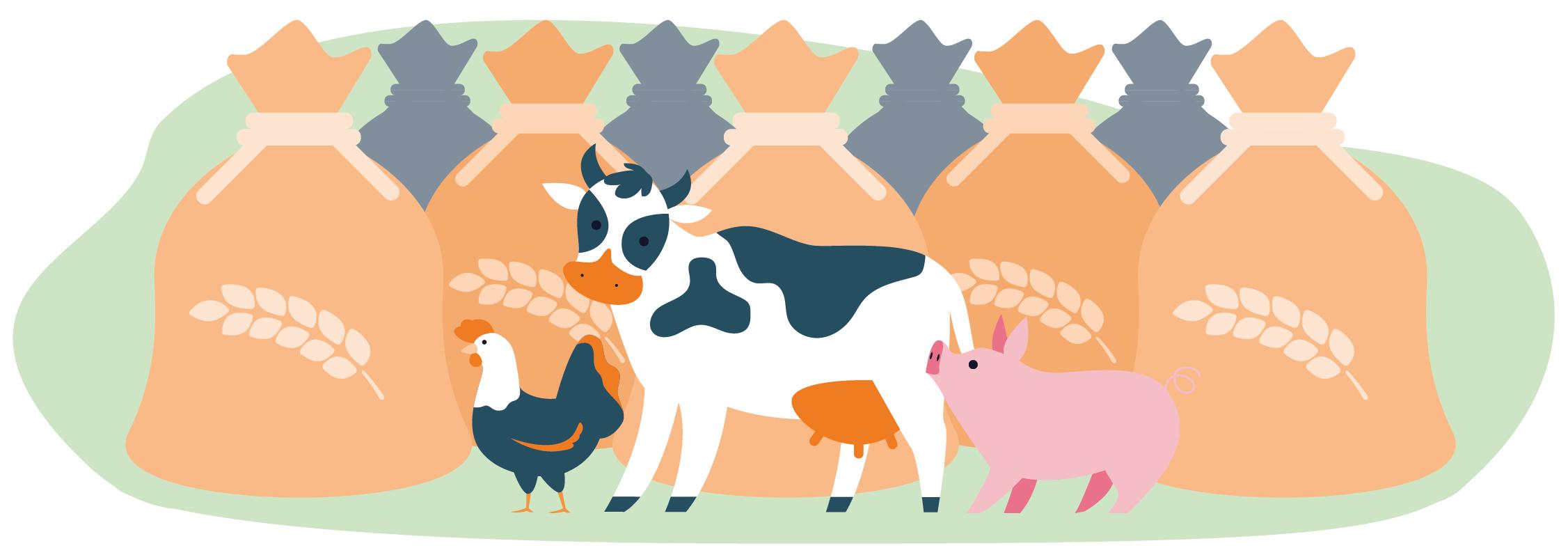 Spreco risorse Io Scelgo Veg-Essere Animali