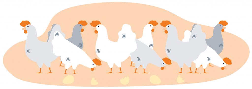Uova Io Scelgo Veg-Essere Animali