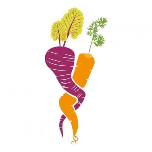 lo famo sano ristorante vegetariano e vegano